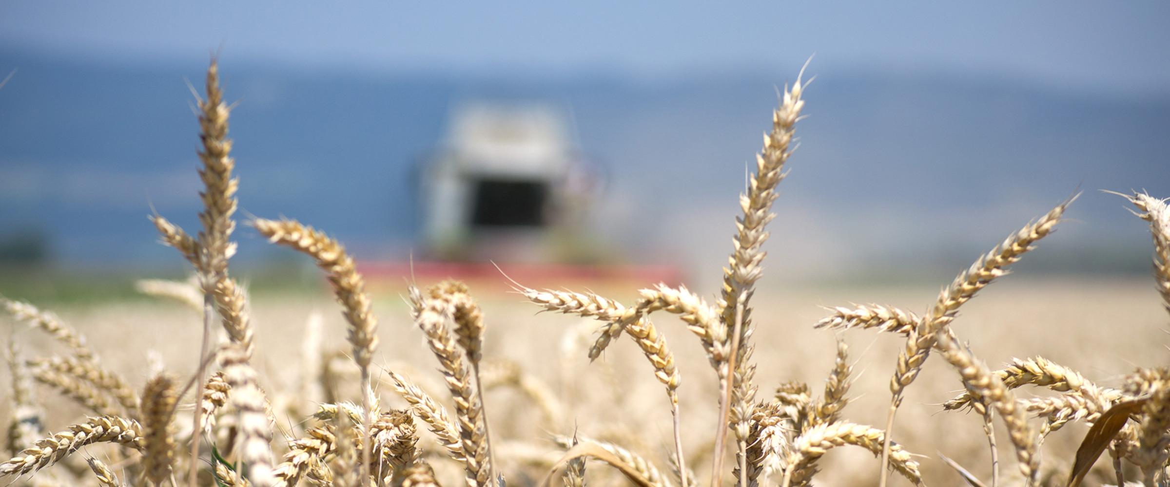 Unsere Landwirtschafft's