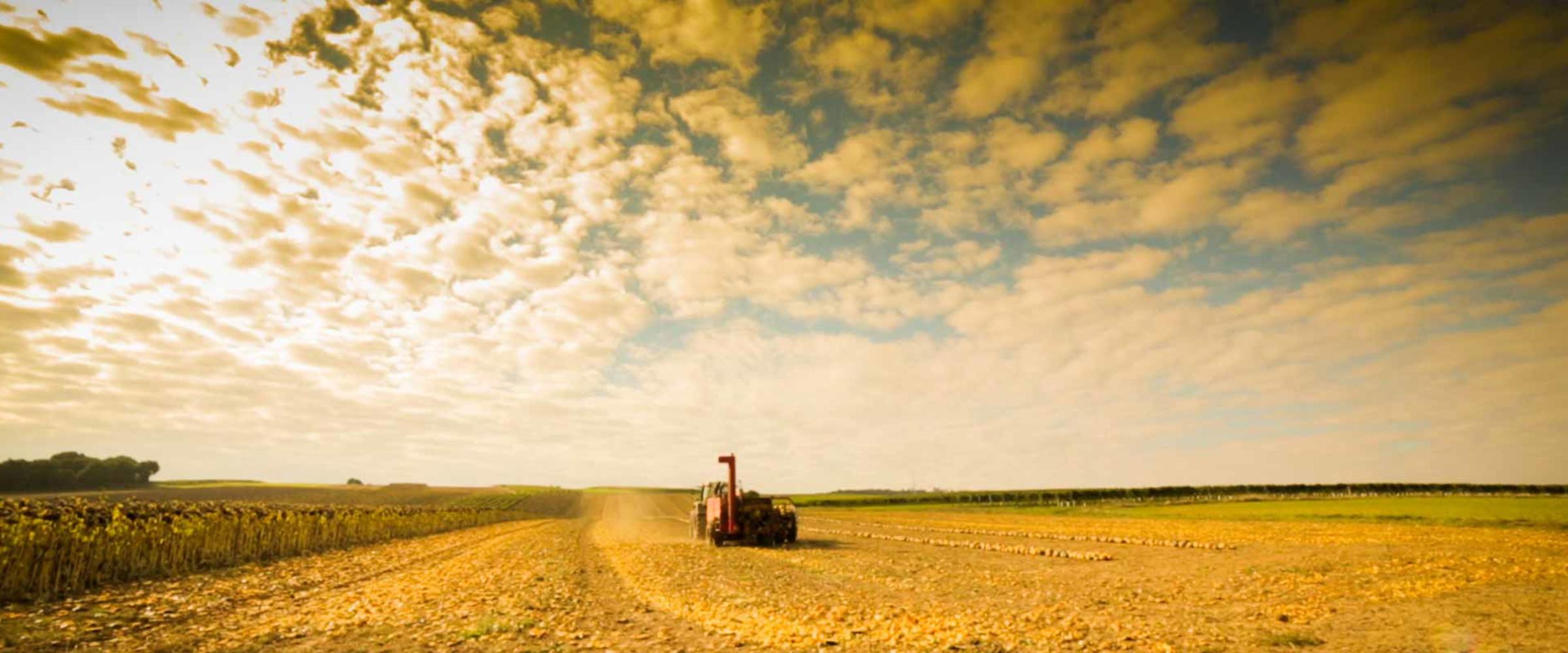 Niederösterreichs Bauern